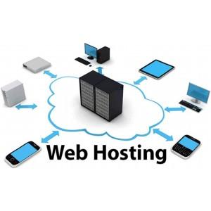 Driving Instructor Website hosting